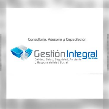 Gestion y asesoria empresarial Gestion Integral
