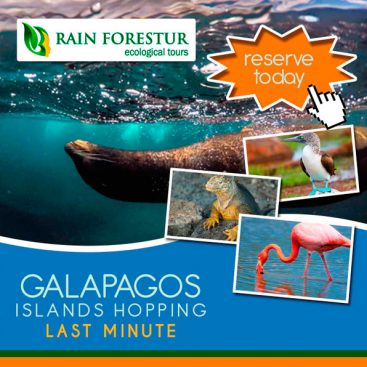 galapagos-travel-agency-rainforestur