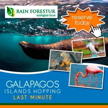 galapagos-travel-agency-rainforestur